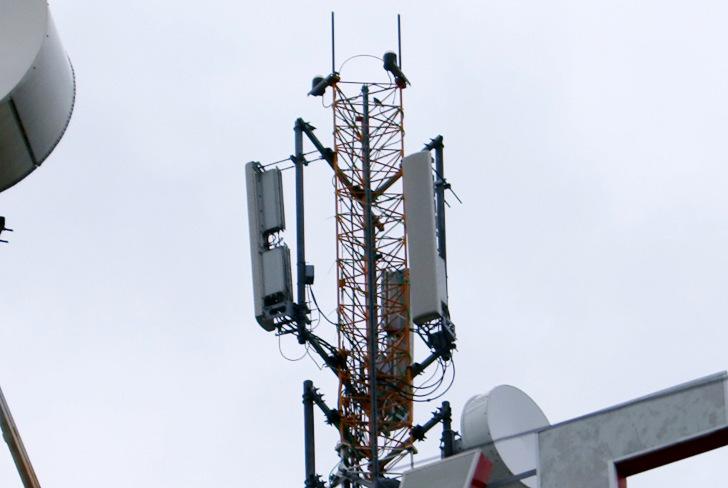 Фотография Базовой Станции TELE2 в г.Кронштадт